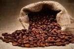 How Many Types of Coffee Beans Are There